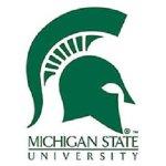 michigan_state_logo[1]
